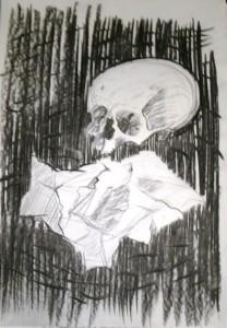 schedel1a
