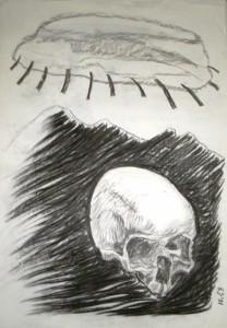 schedel 3